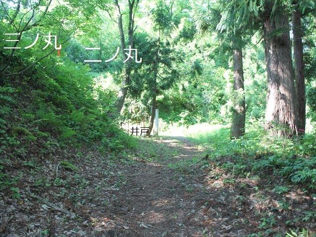 鮫ヶ尾IMG_3759