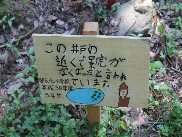鮫ヶ尾IMG_3760