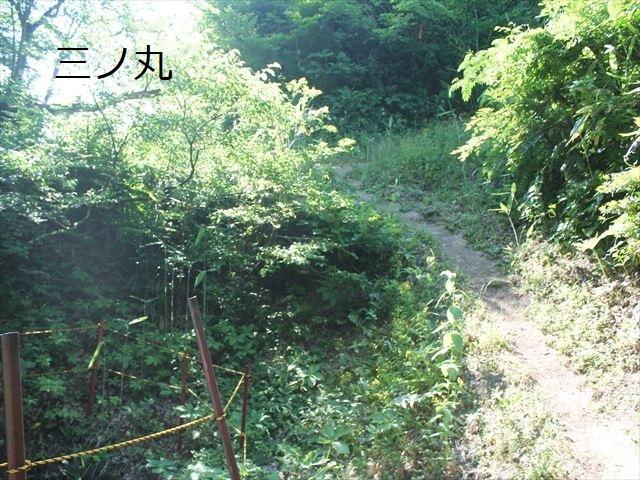 鮫ヶ尾IMG_3762