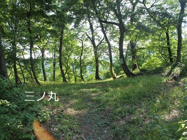 鮫ヶ尾IMG_3763