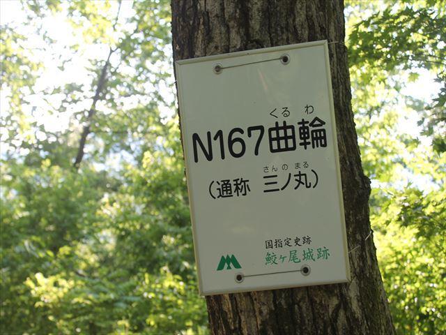 鮫ヶ尾IMG_3764