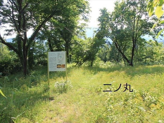 鮫ヶ尾IMG_3774