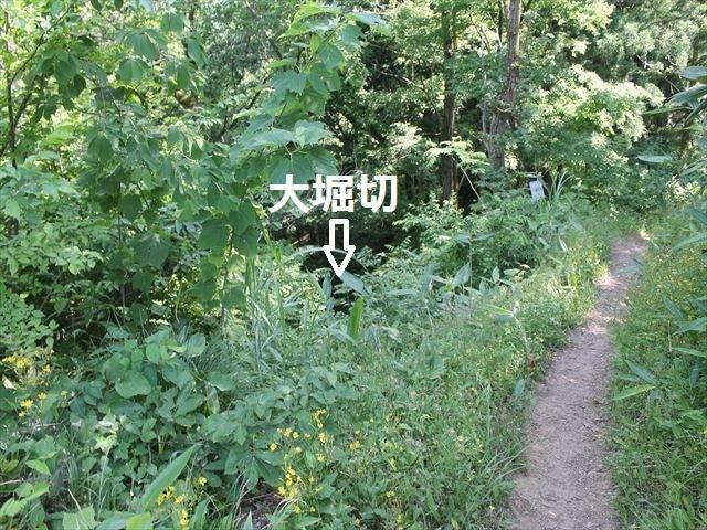 鮫ヶ尾IMG_3728
