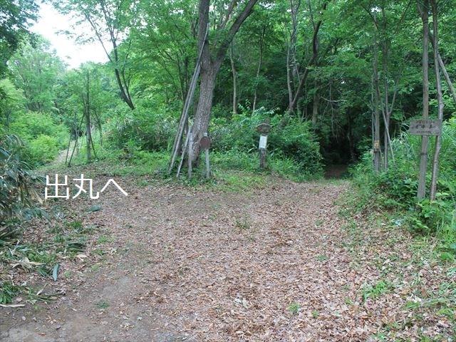鳥坂IMG_3946