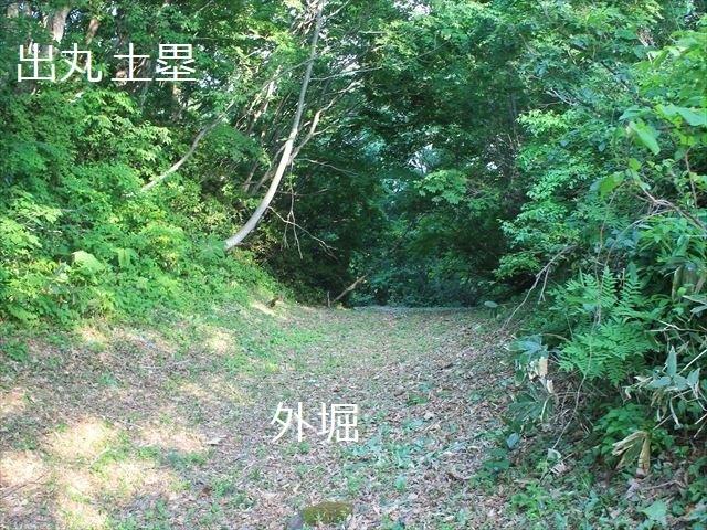 鳥坂IMG_3820