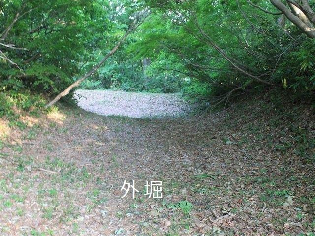 鳥坂IMG_3822