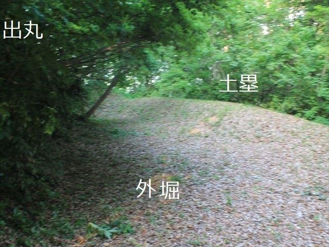 鳥坂IMG_3823