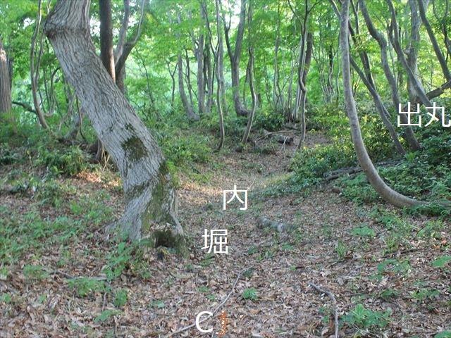鳥坂IMG_3833