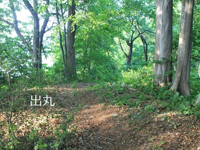 鳥坂IMG_3840