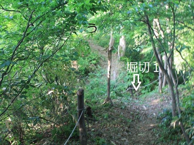 鳥坂IMG_3843
