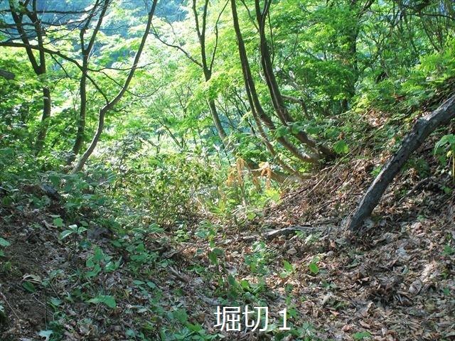 鳥坂IMG_3845