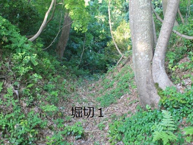 鳥坂IMG_3846