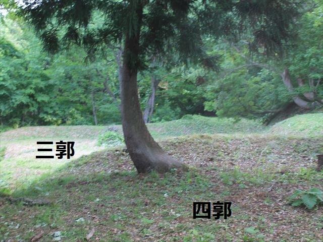 鳥坂IMG_3878