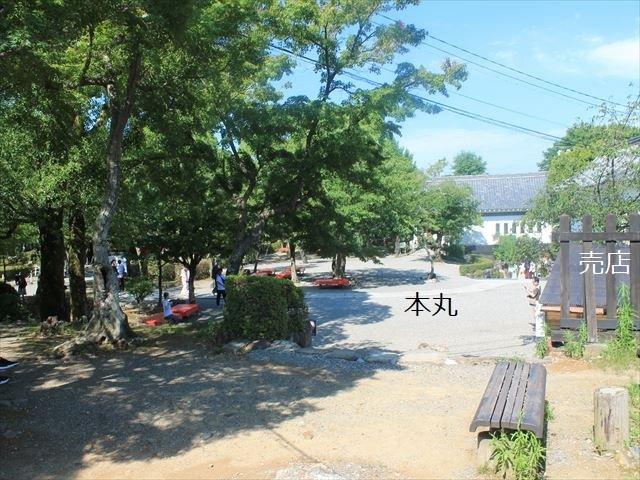 犬山①IMG_4289