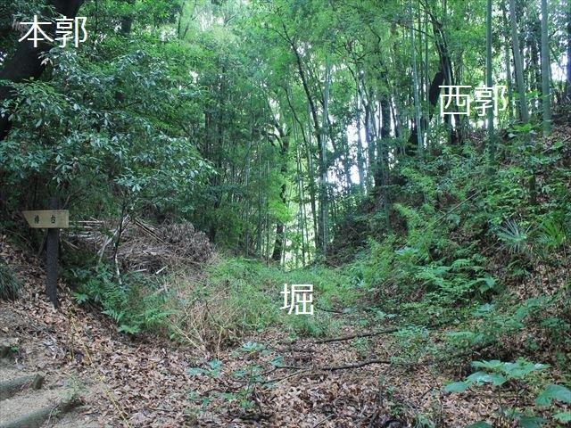 岩崎②IMG_4052