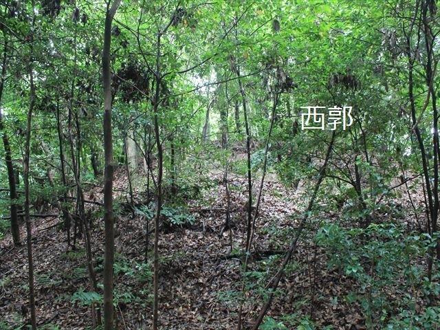 岩崎②IMG_4054