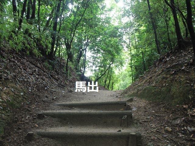 岩崎②IMG_4057