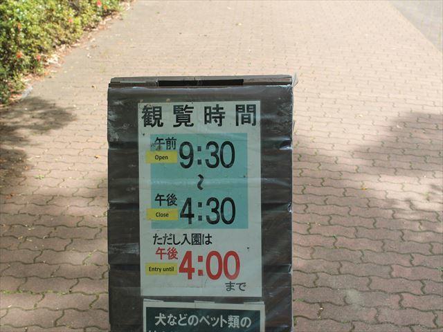 深大寺IMG_3948