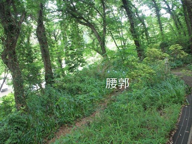 深大寺IMG_3991