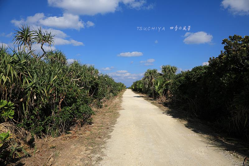 久高島 2
