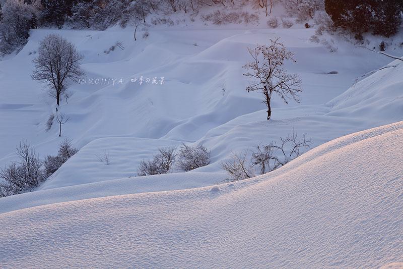 松之山 3