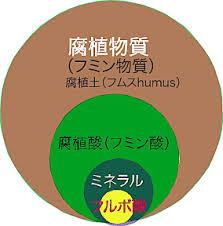 フルボ酸3