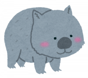 animal_wombat.png