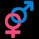 gender03_heterosexual.png