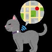 pet_gps_cat.png