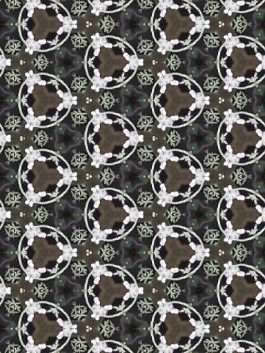190702_162103_ed.jpg
