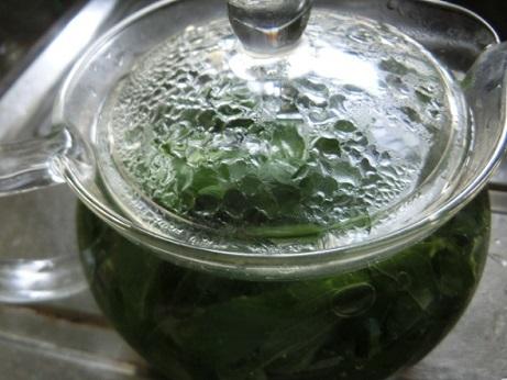 2019-07-04 mint-tea