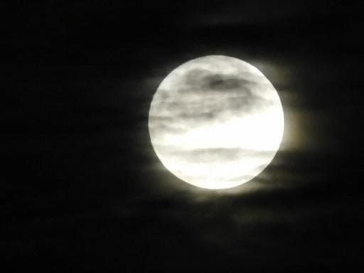 2019-11-12 moon2