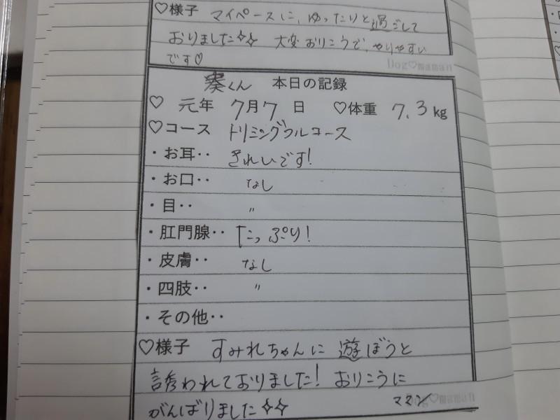 20190709_212503_18.jpg