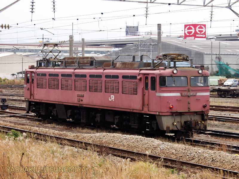 EF81404.jpg