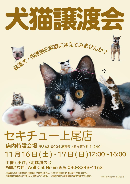 2019_11_16-17_ageo_sekichyu_chirasi.jpg