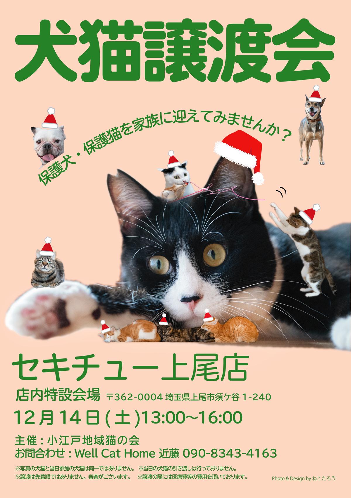 2019_12_14_ageo_sekichyu_chirasi.jpg