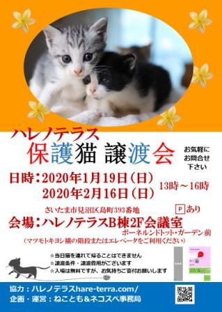 2020_2_16harenoterasu-shirashi.jpg