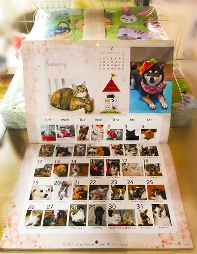 2020_366wankonyanko_calendarh-hanbai.jpg