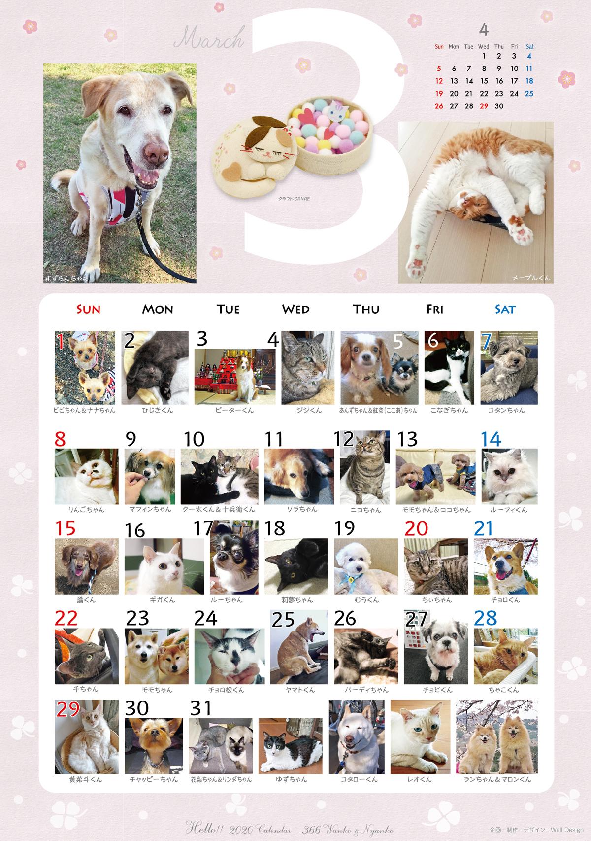 2020_366wankonyanko_calendarh3-sa.jpg