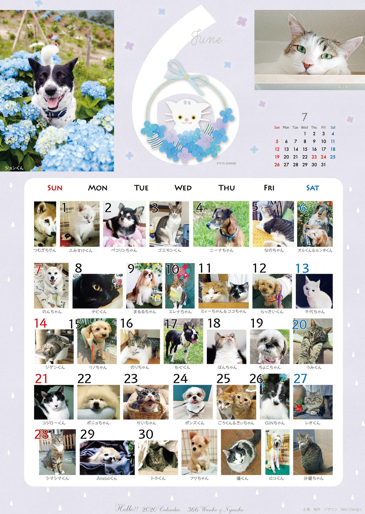 2020_366wankonyanko_calendarh6-sa.jpg
