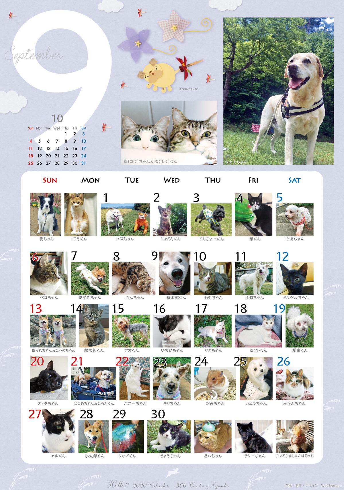 2020_366wankonyanko_calendarh9-sa.jpg