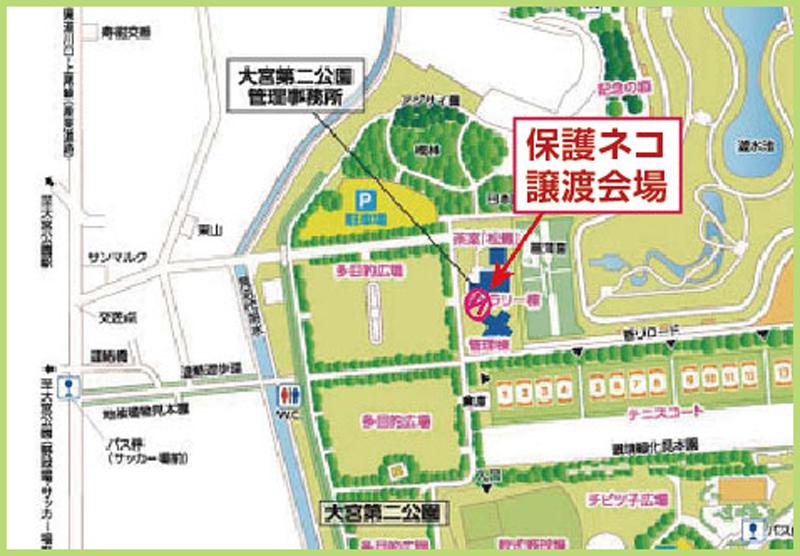 WellCatHome_dini_parkmap_1.jpg