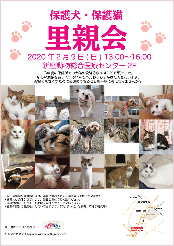 niiza_chirashi-2020-02-16.jpg