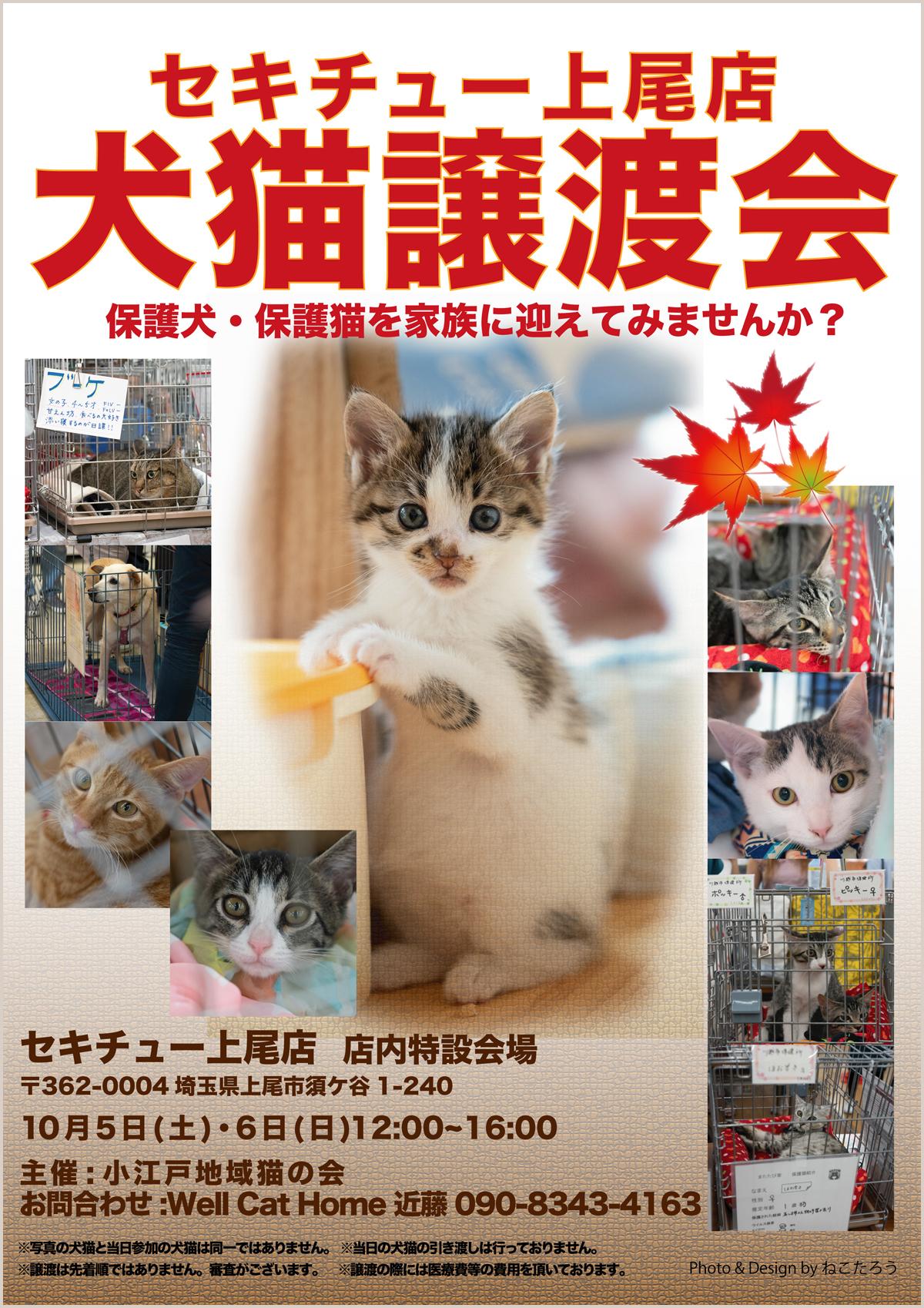 sekichu10_print-72.jpg