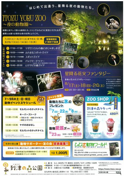 小倉の夜の動物図鑑-2