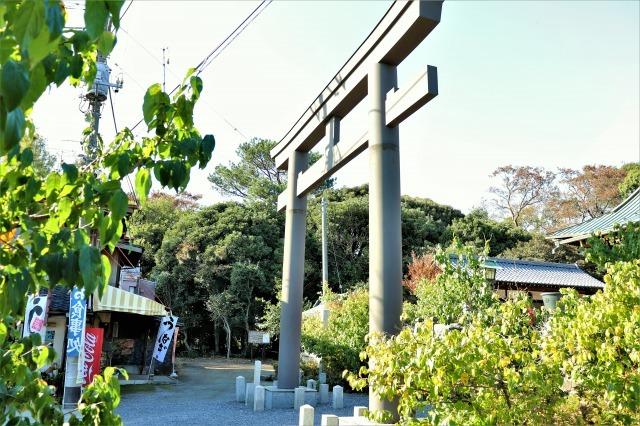 IMG_7703 (2)