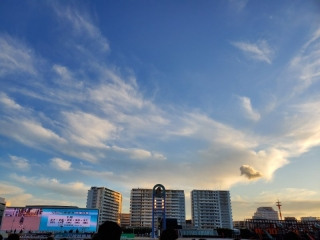 川崎競馬70周年記念_004