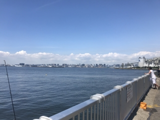 若洲海浜公園_8