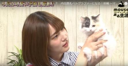内田真礼さん元気よくマウスの最新動画に出演!! 子猫と一緒で可愛えええええ