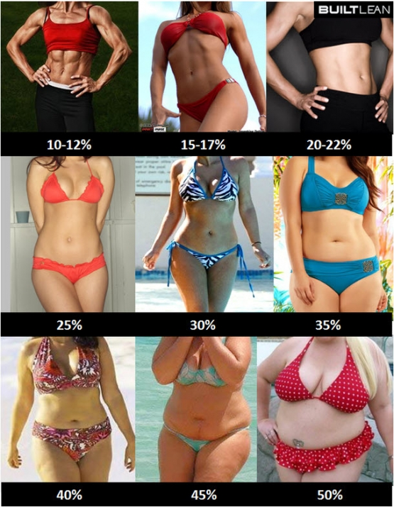 body-fat-percentage-women_201907111216053fd.jpg